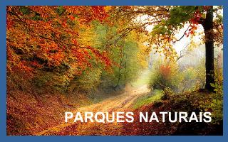 Parques naturais